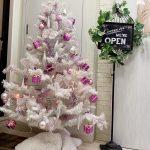 クリスマスツリーを飾りました🎄